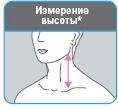Измерение от угла нижней челюсти до ключицы.